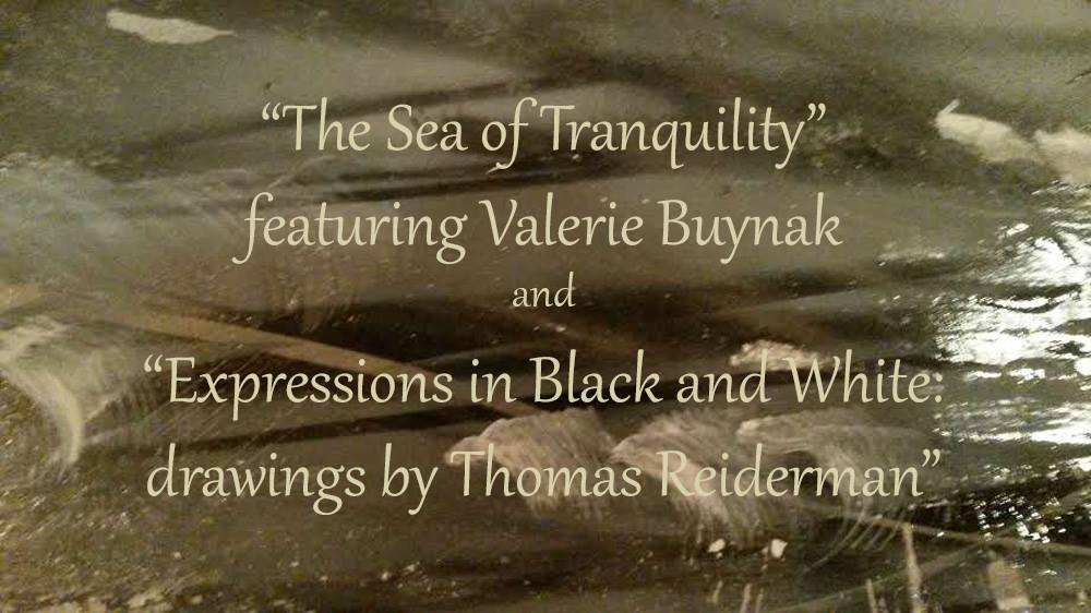 Sea of Tranquility & Expressions in Black and White exhibits show image for The BOX Gallery