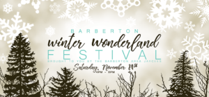 Barberton Winter Wonderland 2018 image