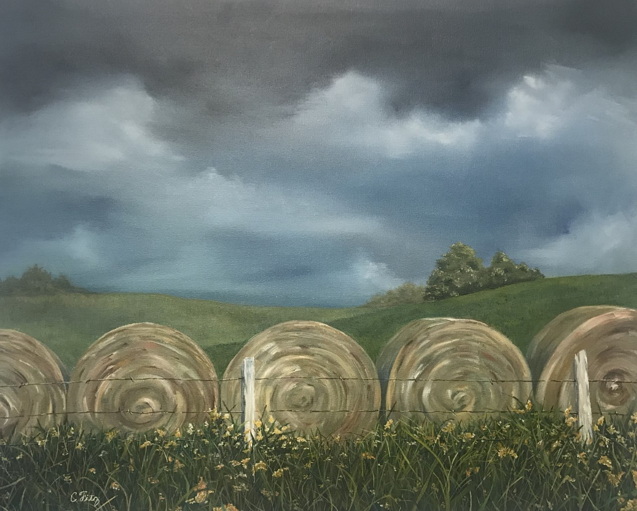 """Rolling Front"" by Carla Fitzpatrick"