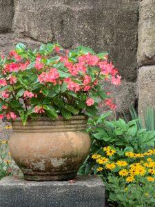 garden wall photo by J Bragg